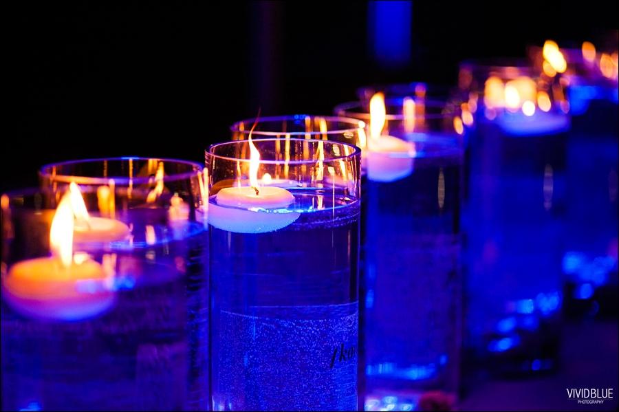 VividBlue-OA-blowfish-wedding058